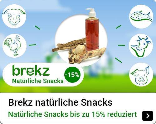 Brekz Natural Snacks