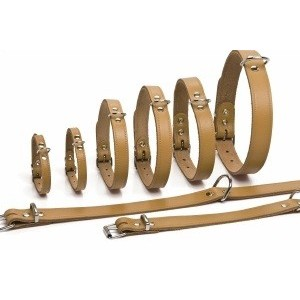 Leren Halsbanden 70 cm voor de hond