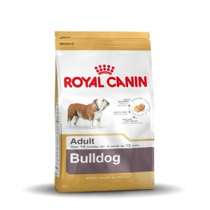 Royal Canin Adult Bulldogge Hundefutter