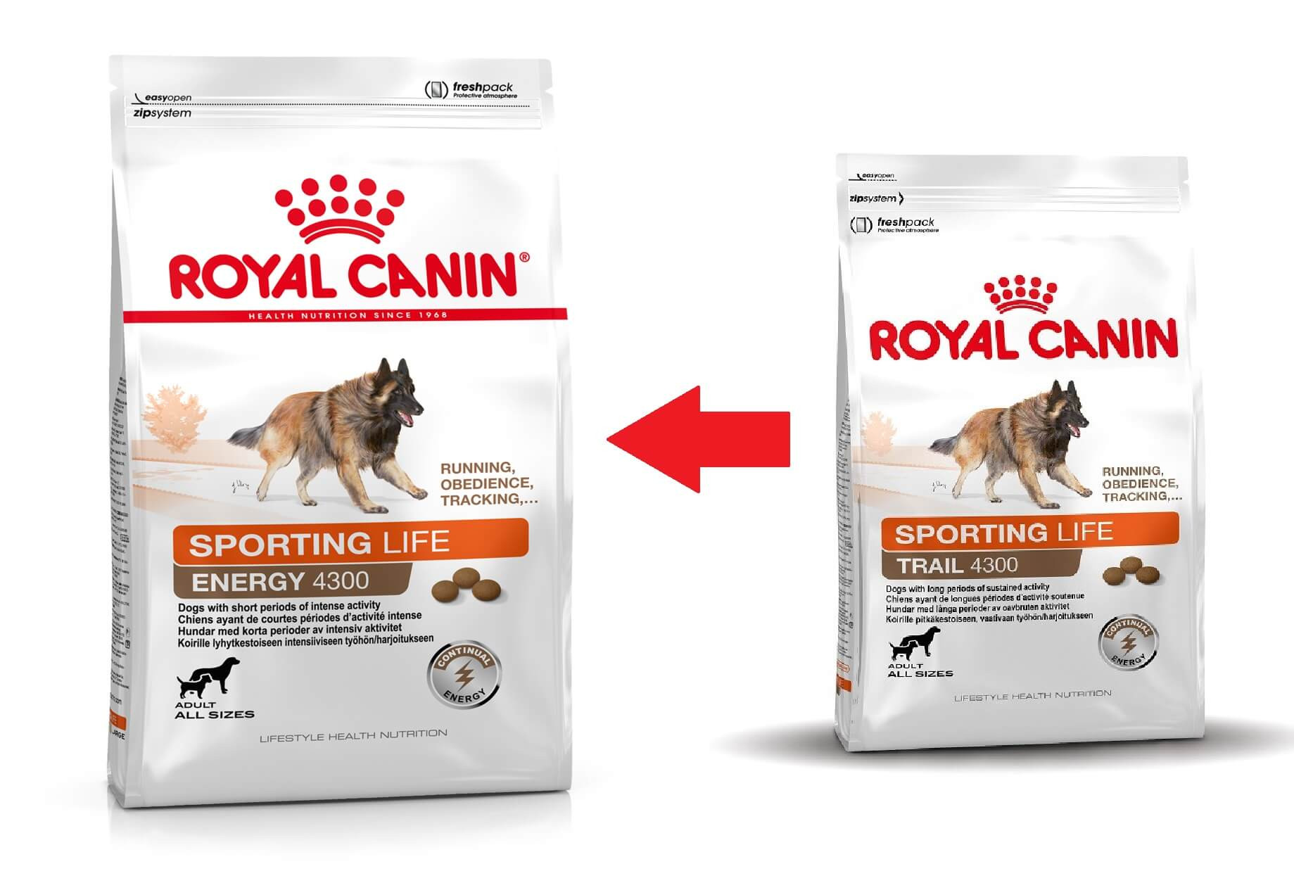 Royal Canin Sporting Energy Trail 4300 Hundefutter