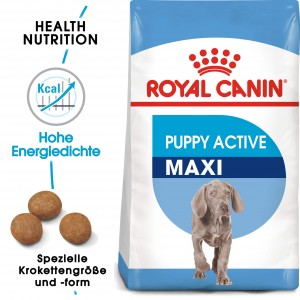 Royal Canin Maxi Junior Active hondenvoer
