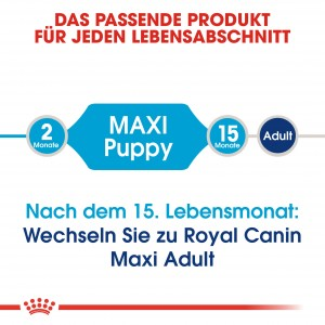 Royal Canin Maxi Puppy Hundefutter
