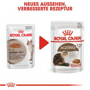 Royal Canin Ageing 12+ Katzen-Nassfutter x12