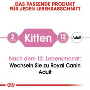 Royal Canin Kitten Katzen-Nassfutter x12