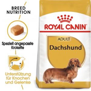 Royal Canin Adult Dachshund Hundefutter