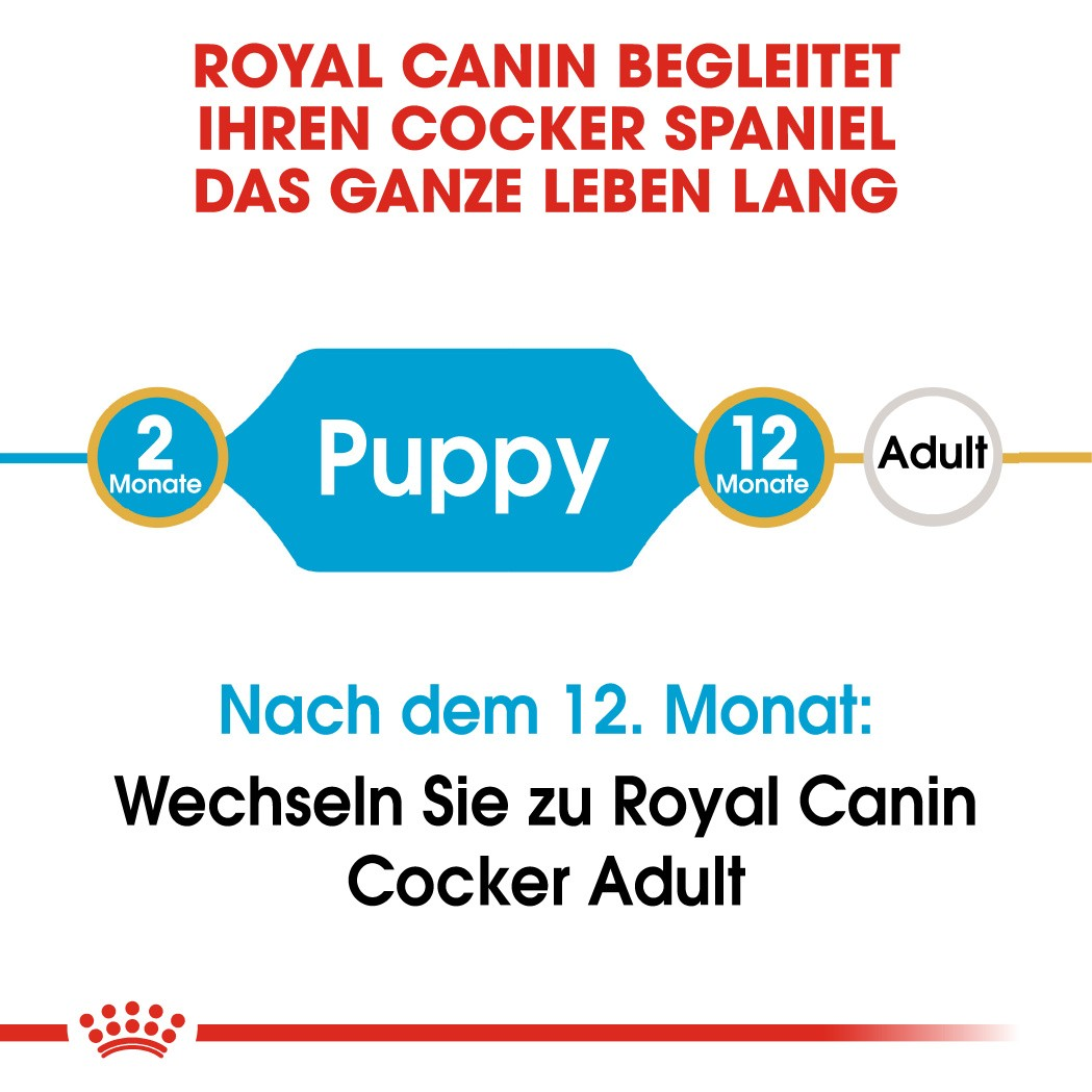 Royal Canin Puppy Cocker Spaniel Hundefutter