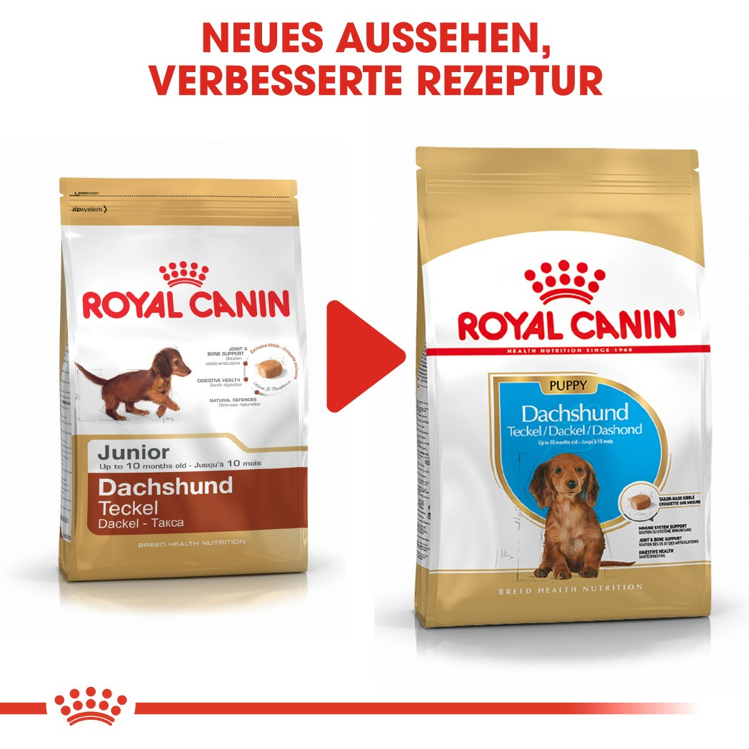 Royal Canin Dachshund Junior Hundefutter