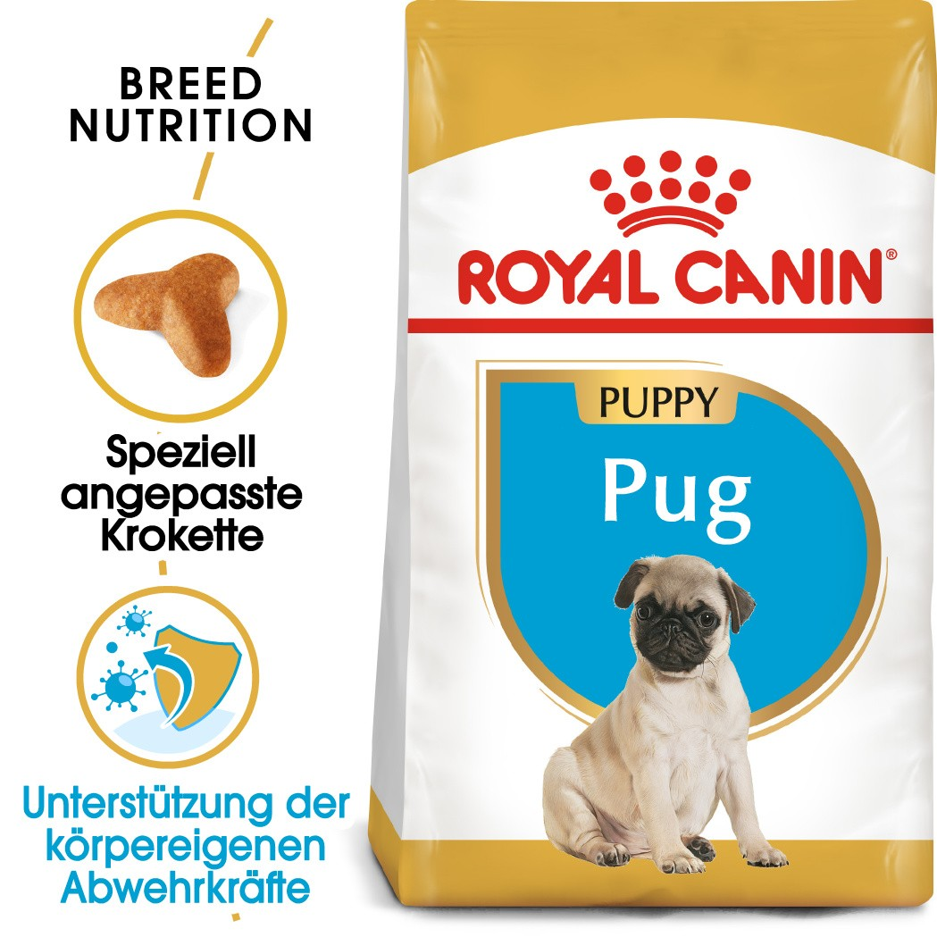Royal Canin Puppy Mops Hundefutter