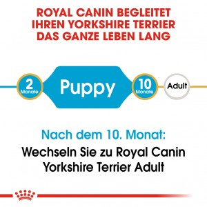 Royal Canin Puppy Yorkshire Terrier Hundefutter