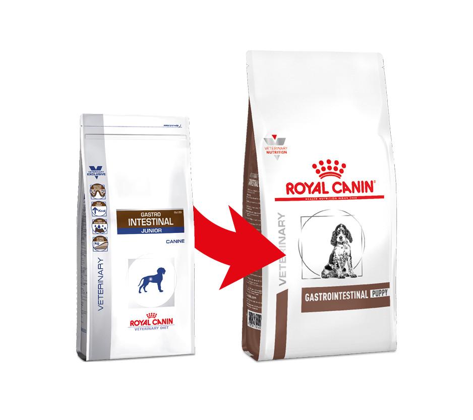 Royal Canin Gastro Intestinal Junior Hundefutter- GIJ 29