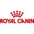 Royal Canin Nassfutter für Hunde